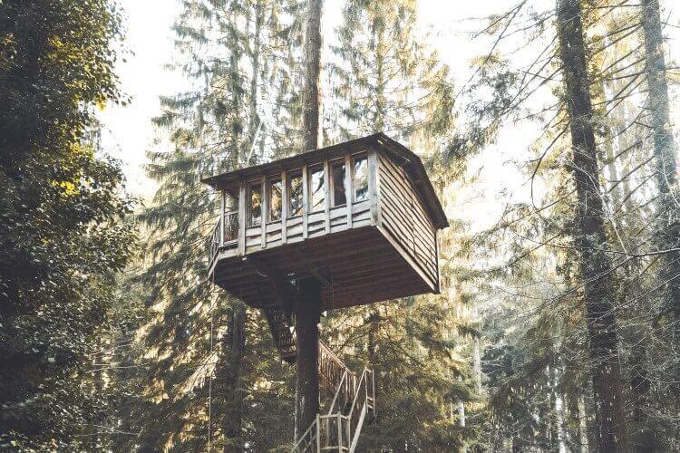 treehouse niche